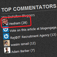 Top Commentators Widget