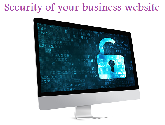 security of your business website